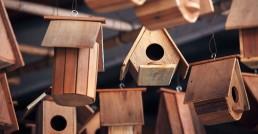 Baubegleitung für Ihr Wohneigentum