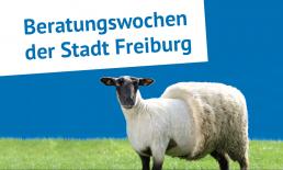 Beratungswochen der Stadt Freiburg